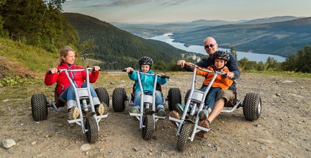 mountaincart family_640