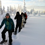 snöskor i åre 2_640