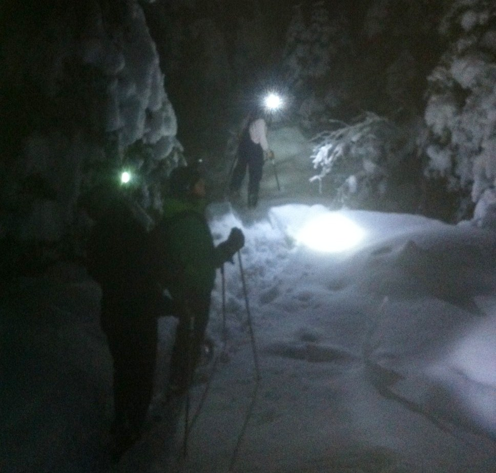 snöskopaus i Åre snöskor i Åre 891026f9a0e6c
