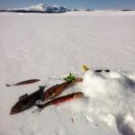 isfiske i åre