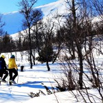 snöskor årefjällen 3_640